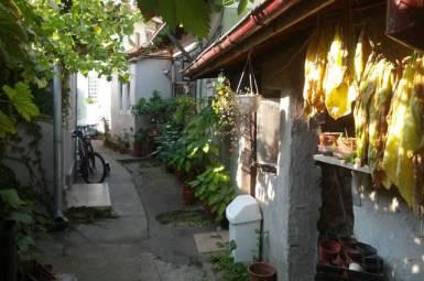 Strada EROU CALIN ION, Bucuresti, Bucuresti Ilfov, 2 Dormitoare Dormitoare, 1 BaieBăi,Casa/Vila,Anunturi Verificate,EROU CALIN ION,F1-45359